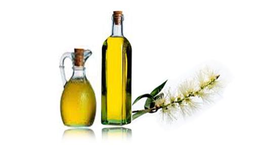 Tinh dầu tràm trà giúp làm đẹp da và những điều cần chú ý