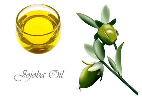 tinh-dầu-jojoba
